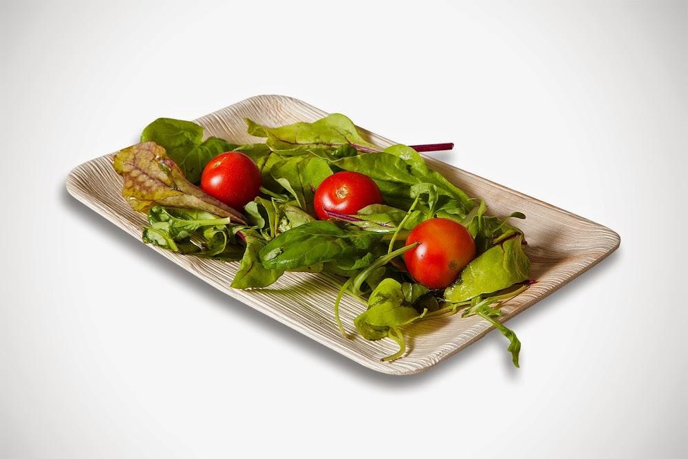 Green Ideas Ltd כלים חד פעמיים מתכלים לסביבה ירוקה יותר